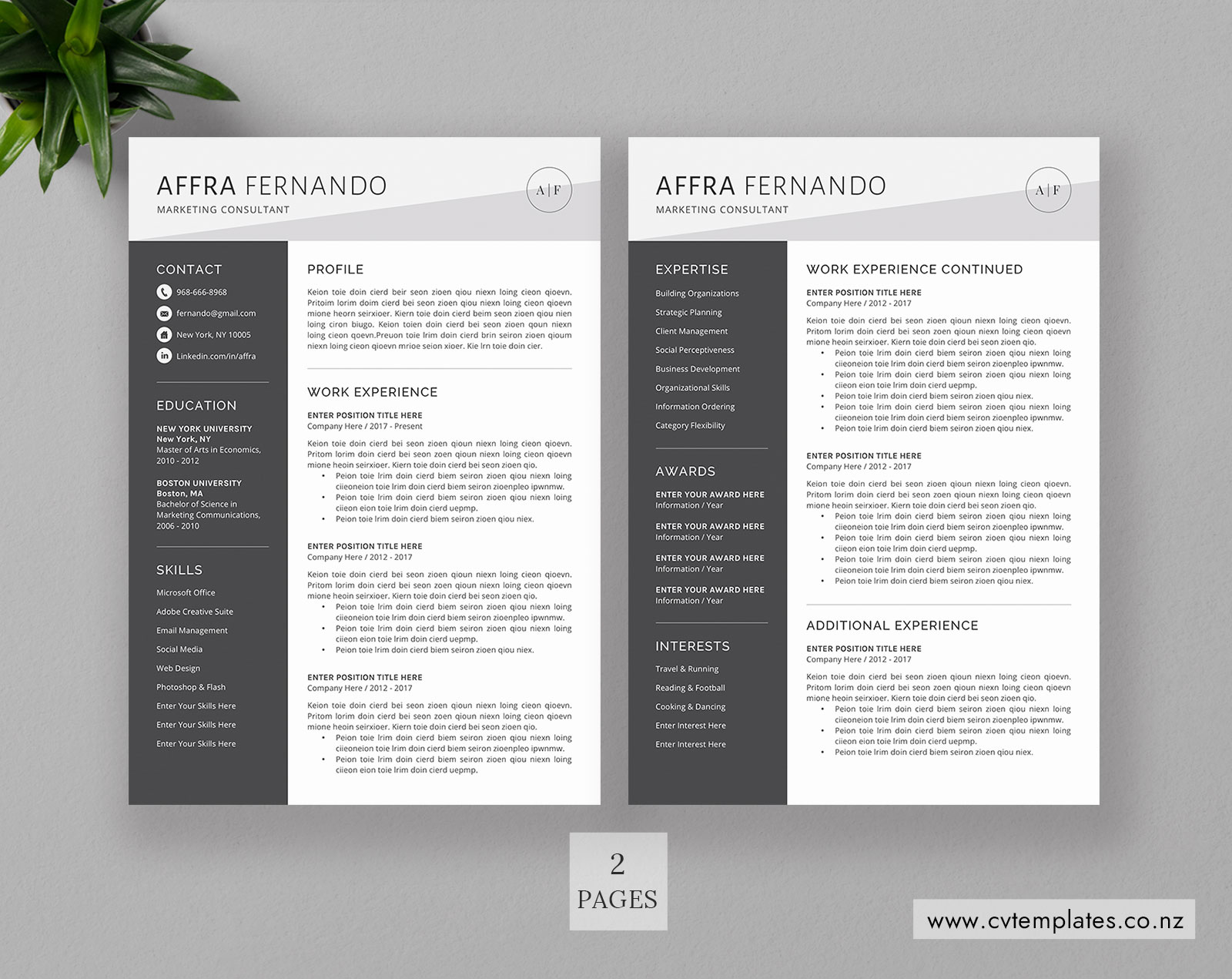 Cv Template For Ms Word Professional Curriculum Vitae Cv