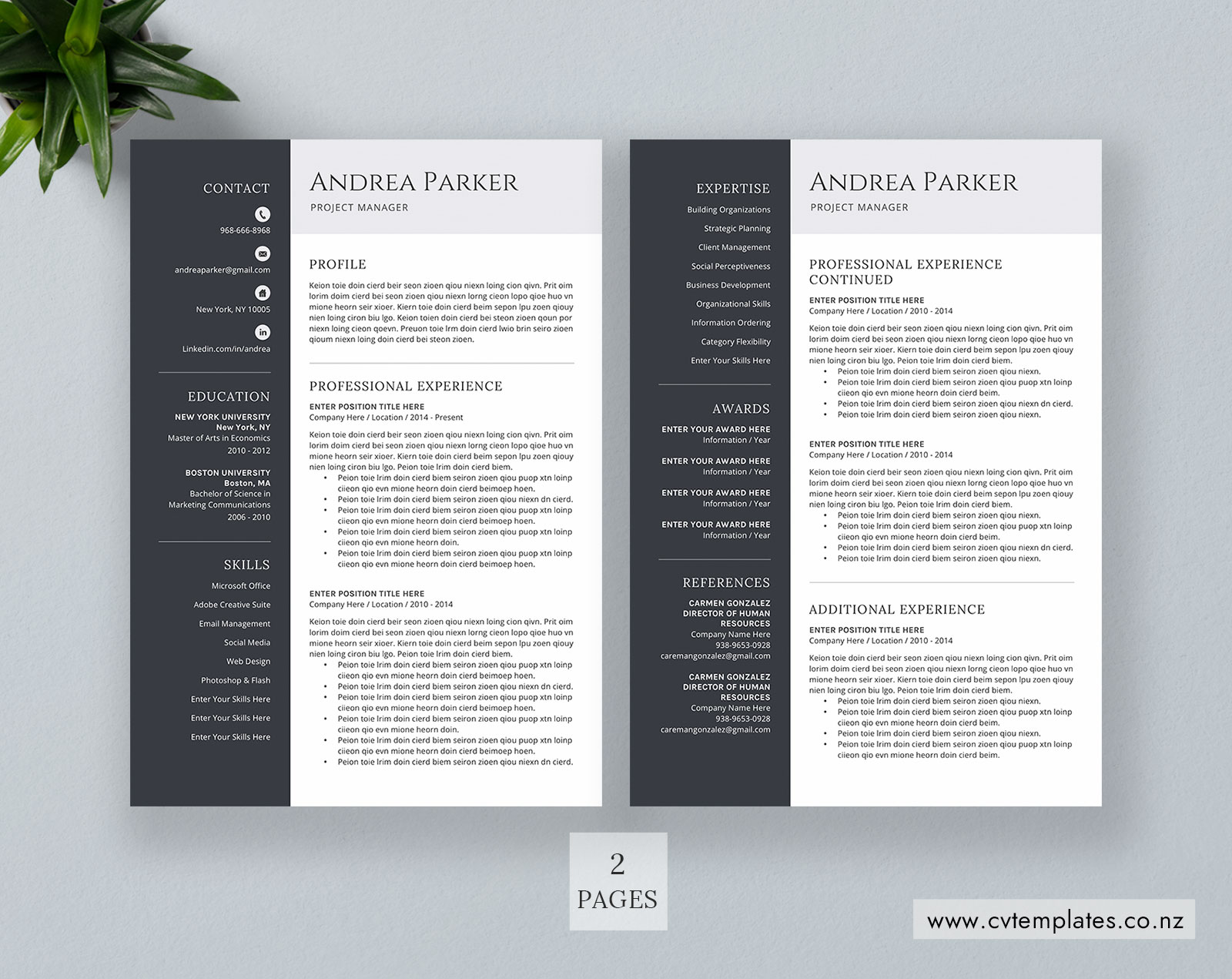 cv bundle  cv templates  professional curriculum vitae  ms word cv template  minimalist cv