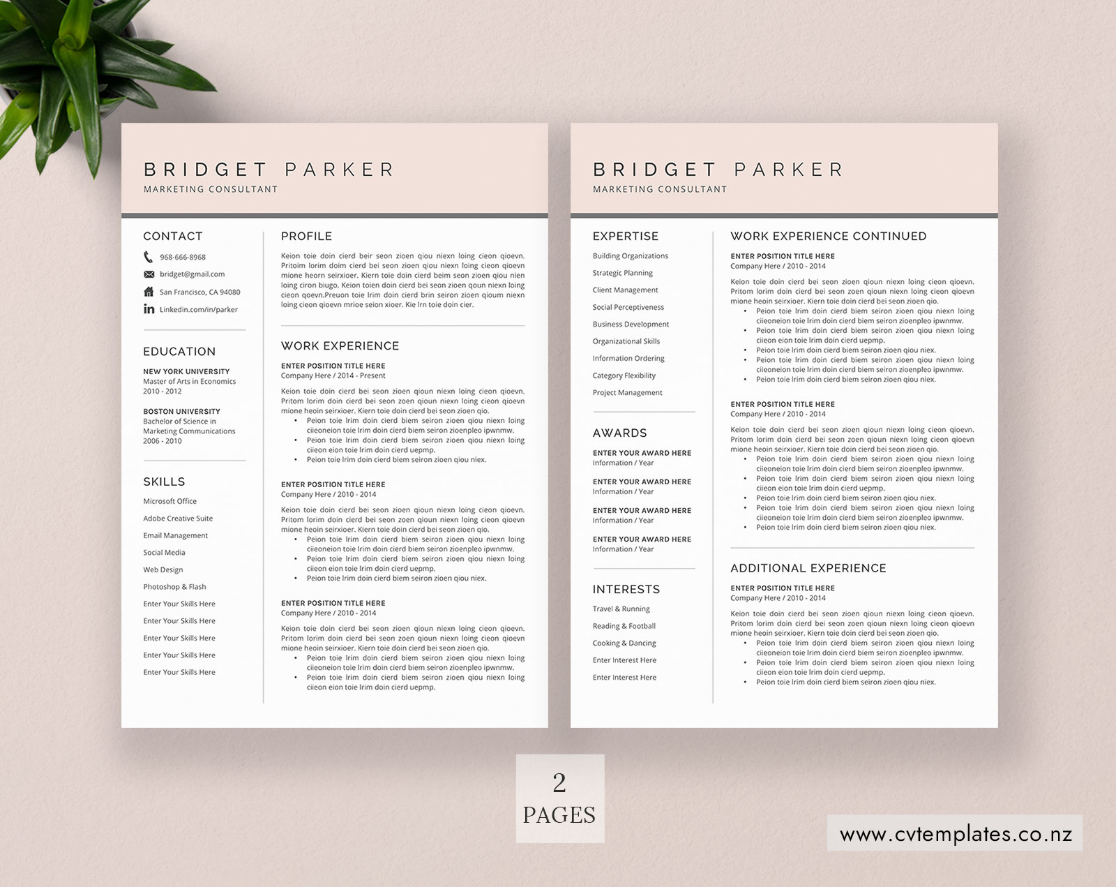Cv Template For Ms Word Curriculum Vitae Modern Creative