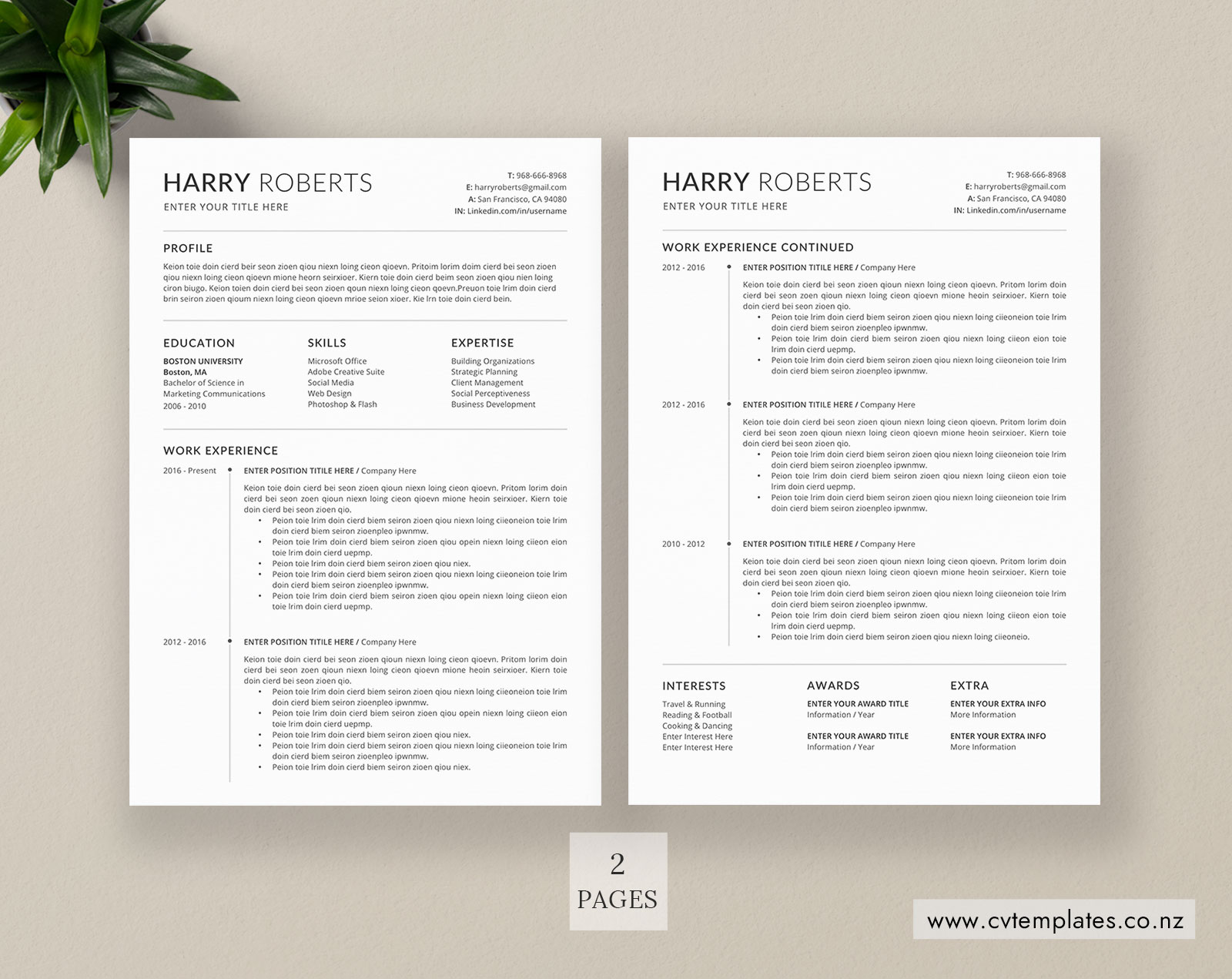 Cv Template For Ms Word Curriculum Vitae Functional Cv Template