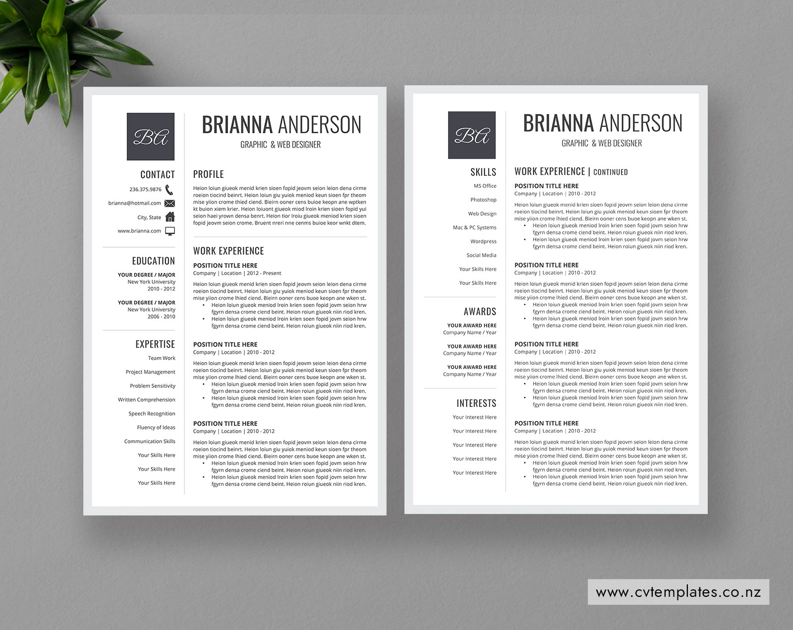 Cv Template For Ms Word Professional Curriculum Vitae 1 2