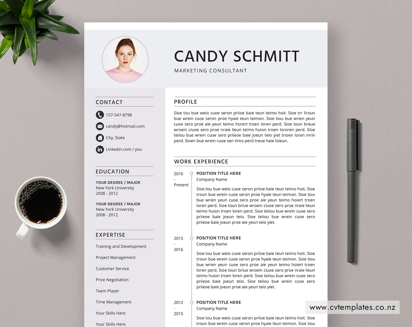 Cv Template For Ms Word Curriculum Vitae Elegant And Modern Cv