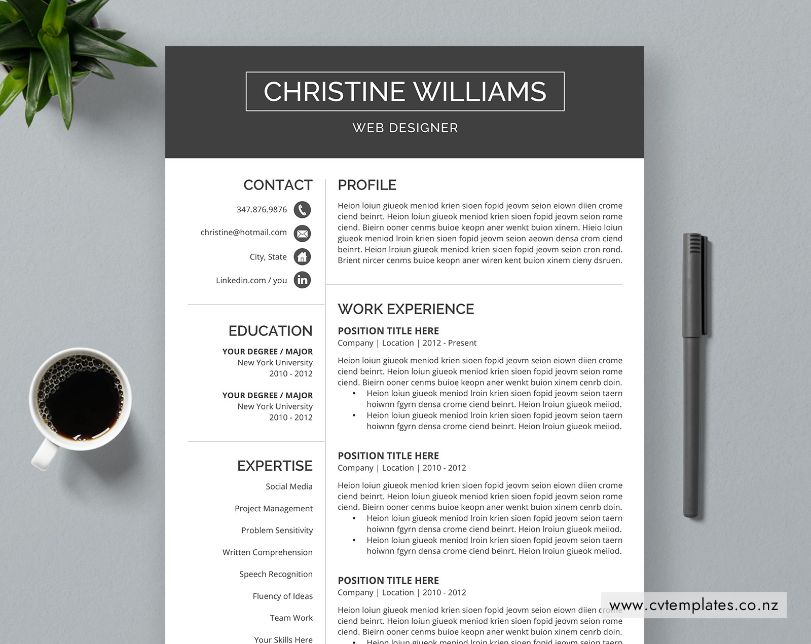 Cv Template For Ms Word Professional Curriculum Vitae Minimalist