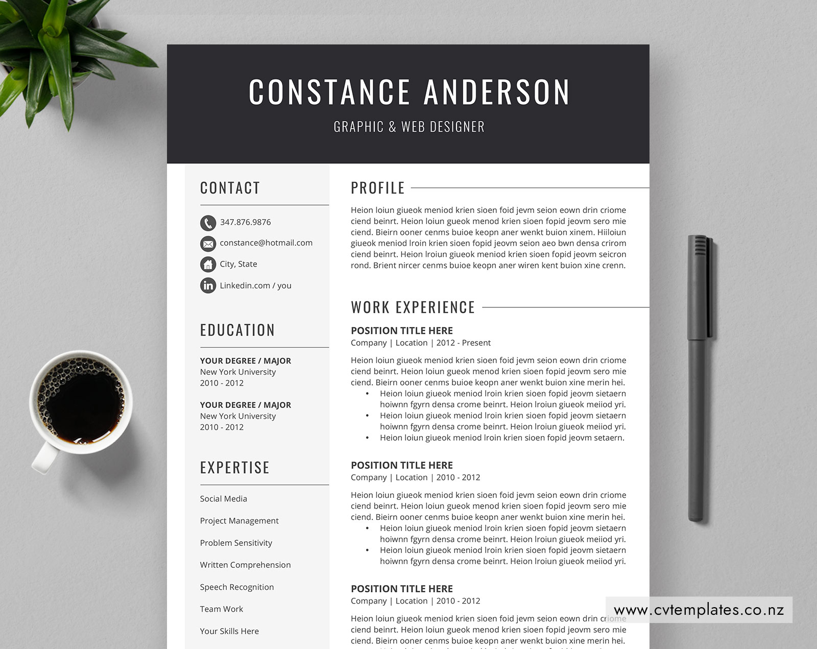 Cv Template For Ms Word Curriculum Vitae Professional Cv
