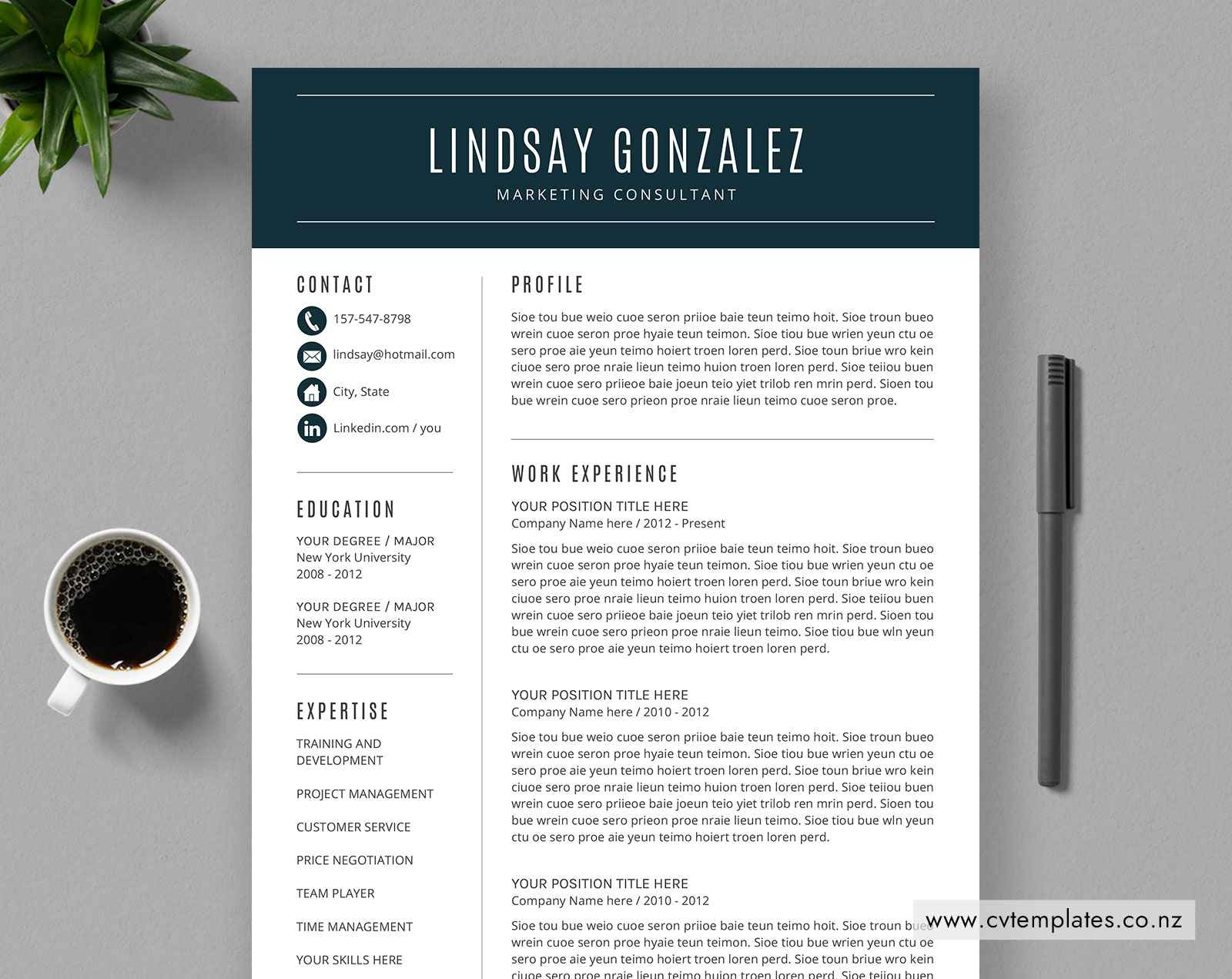 Cv Template For Ms Word Curriculum Vitae Editable Cv Template