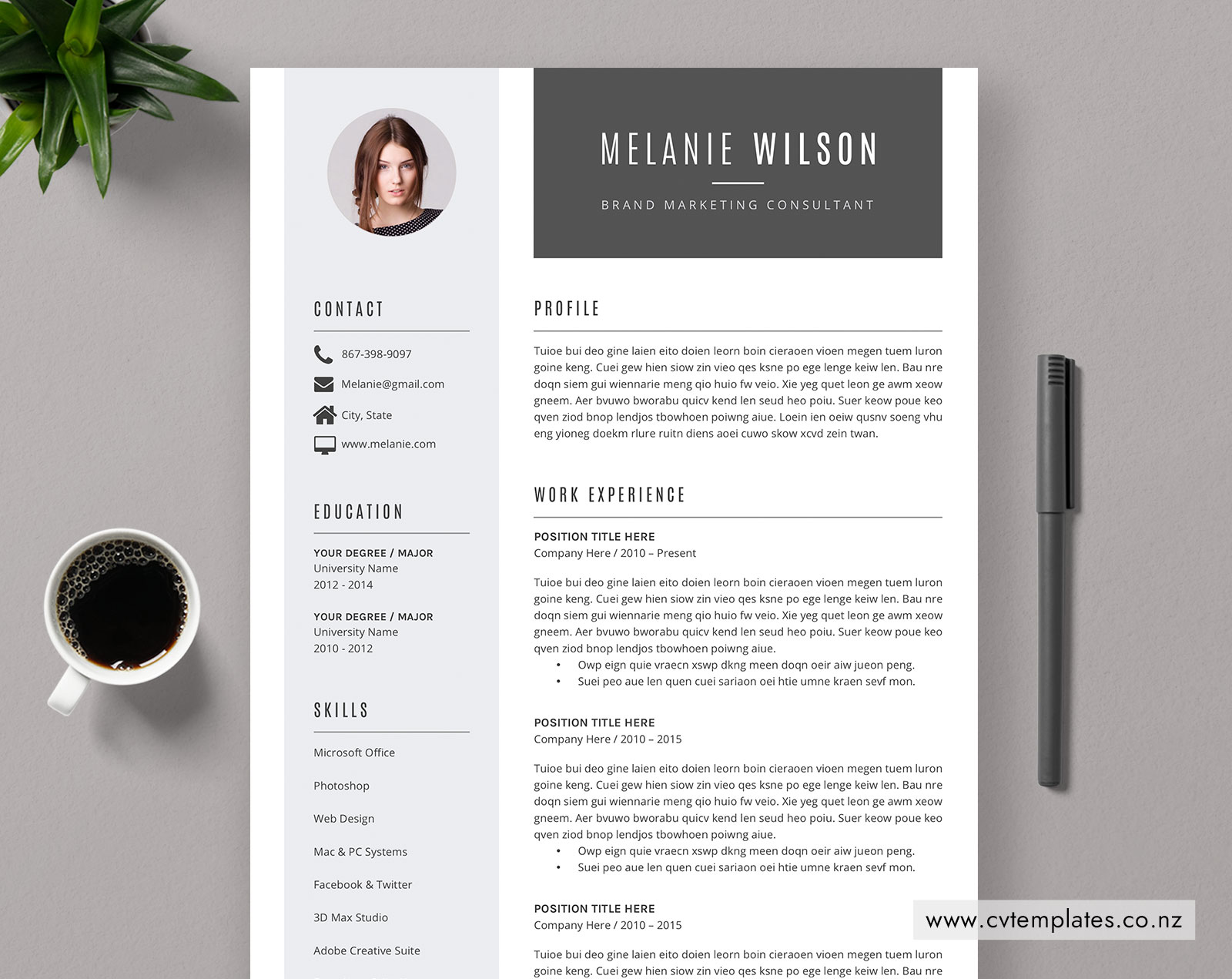 Cv Template For Ms Word Curriculum Vitae Elegant And