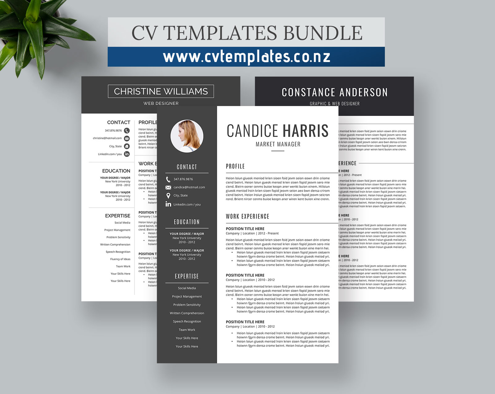 Cv Templates Bundle For Ms Word Curriculum Vitae Professional